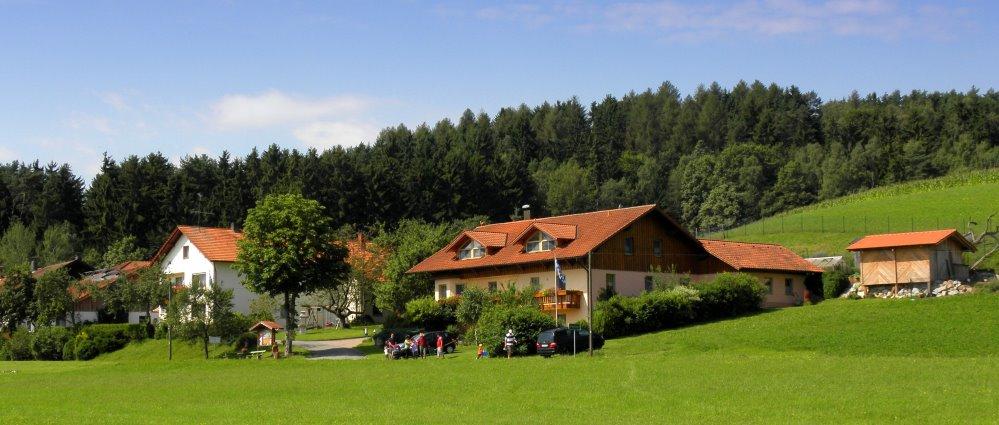 Bayerischer Wald Bauernhof mit Ponyreiten