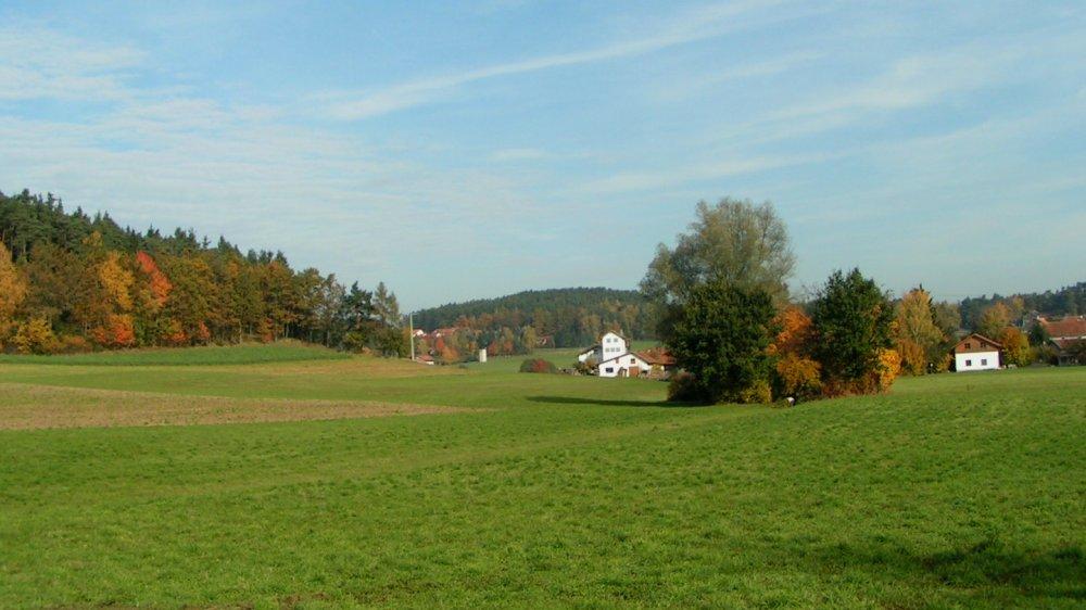 aubauernhof-bayerischer-wald-landschaft-bauernhofurlaub
