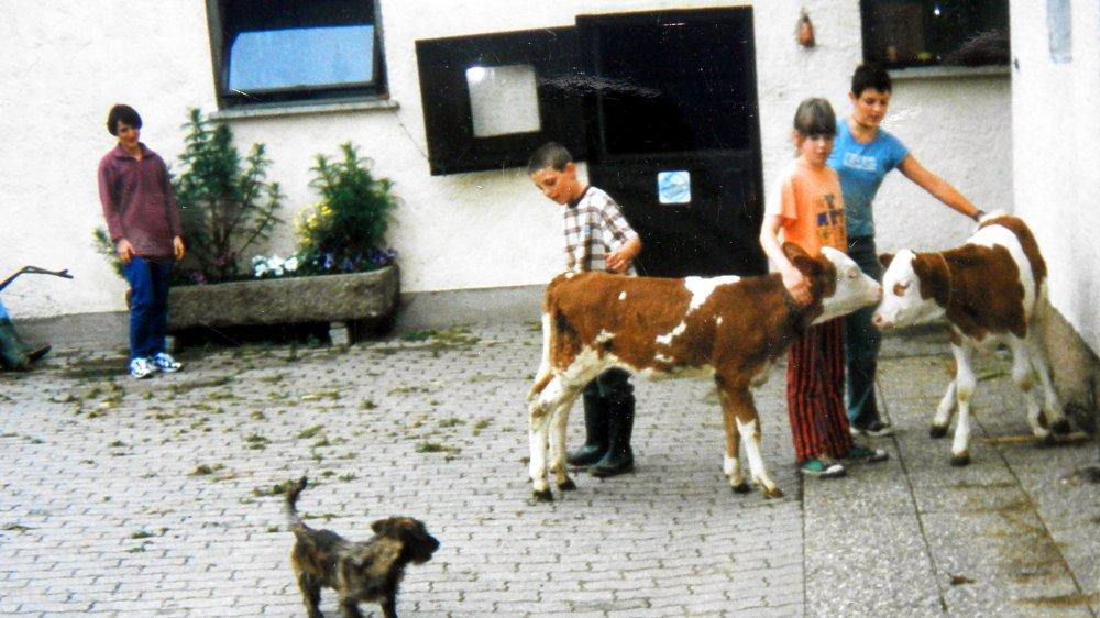 aubauernhof-bayern-bauernhofurlaub-tiere-erleben