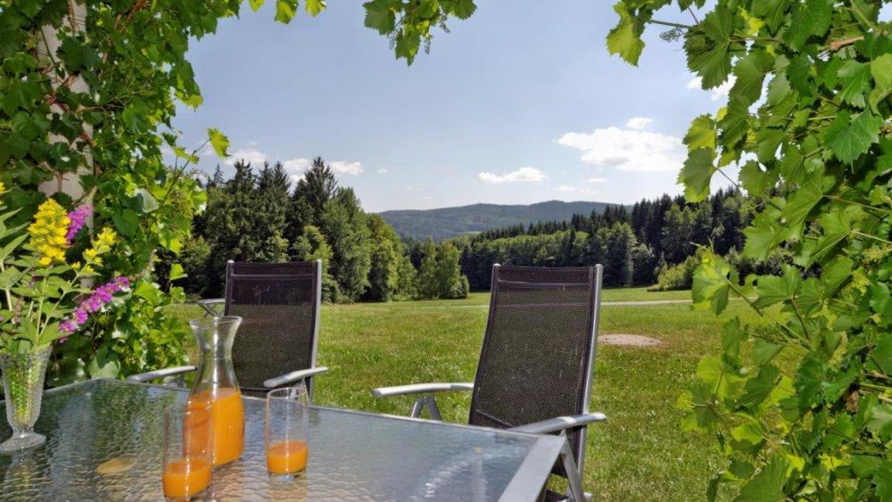 hamberger-ferienhaus-terrasse-liegewiese-ruhige-lage-bayerischer-wald