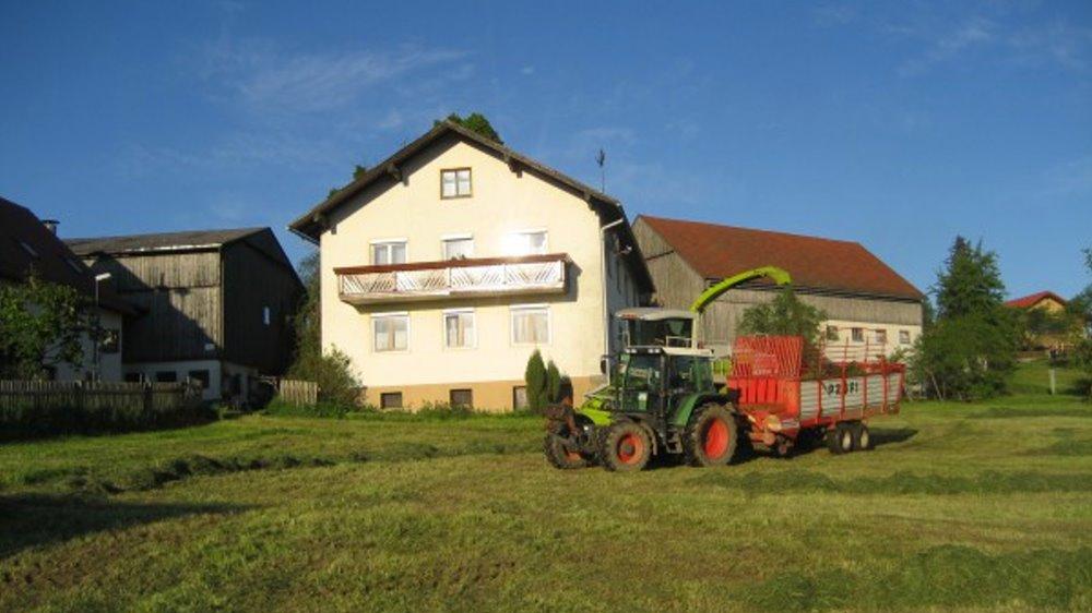 schneider-bauernhof-oberpfalz-ferienhaus-ansicht