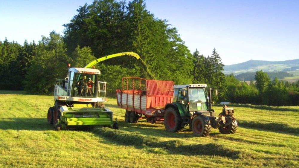 schneider-bauernhof-traktor-fahren-ernte