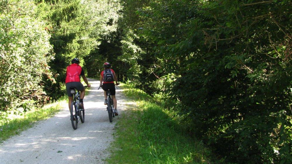 pannbauer-ferienhaus-bayerischer-wald-aktivurlaub-radfahren