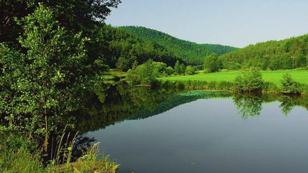 untermurnthal-oberpfalz-gruppenurlaub-oberpfaelzer-wald-landschaft