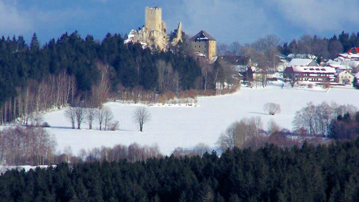 ernst-ferienwohnung-bayerischer-wald-blick-auf-burgruine-weissenstein-im-winterurlaub