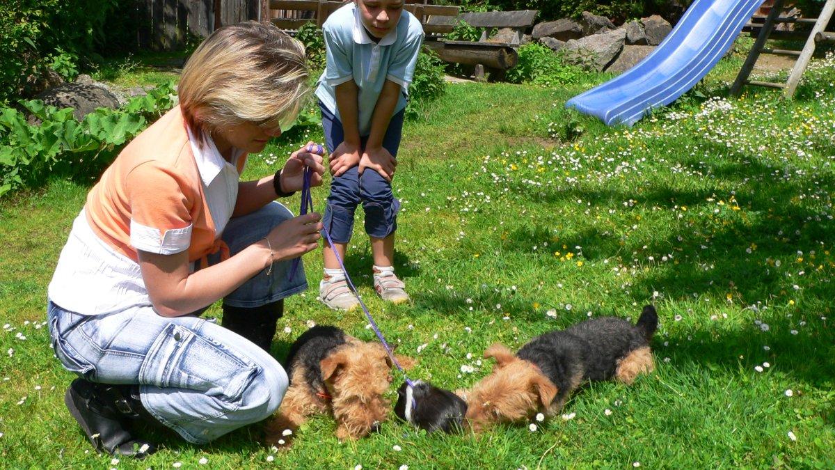 richards-almhuettenurlaub-mit-hund-bayern-familienurlaub
