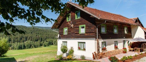 Waldlerhaus mit Kaminofen