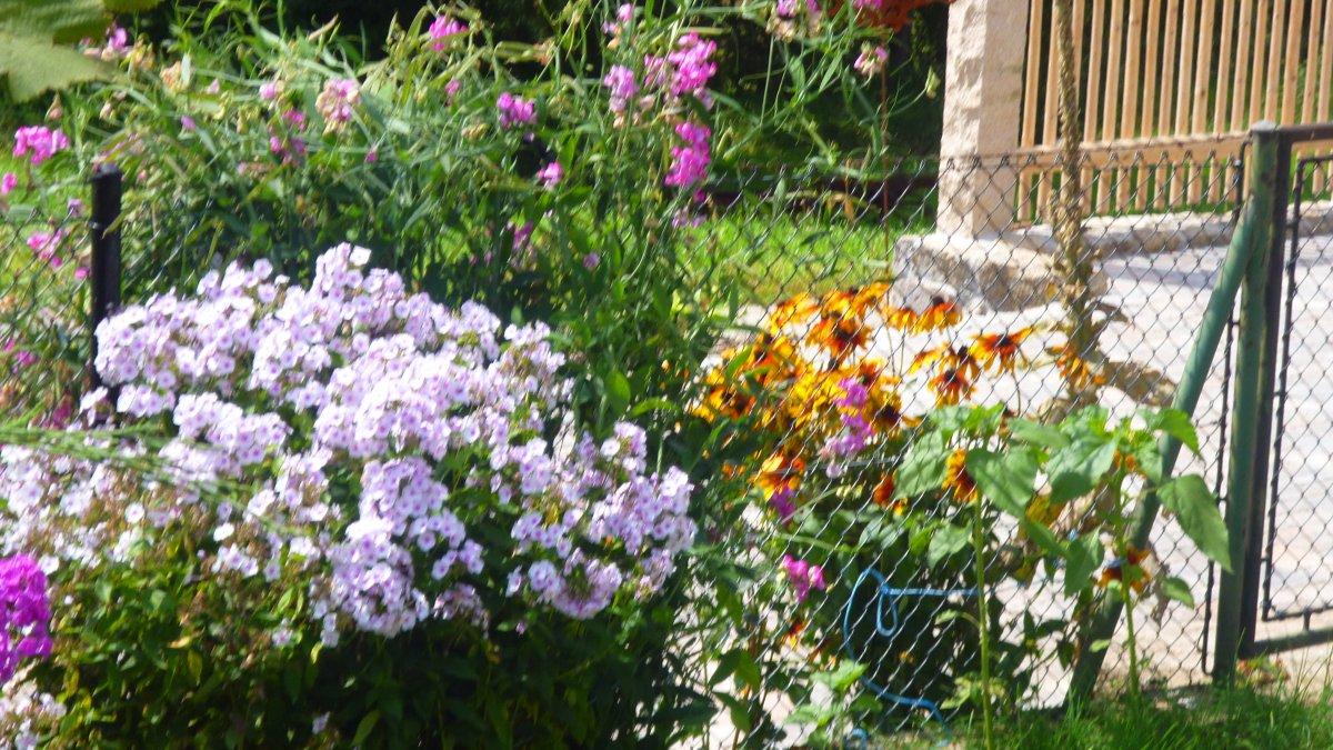 geisberg-gruppenhaus-alleinlage-ferienhaus-bayern-10-personen-gartenblumen