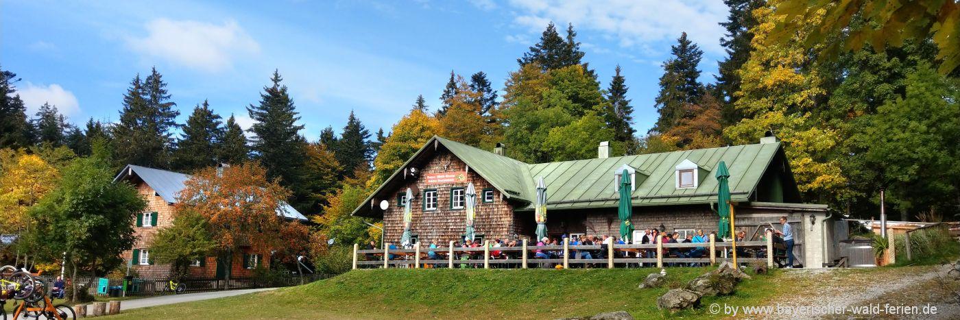 bayerischer-wald-berghütten-ausflugsziele-ferienhütten-wanderungen