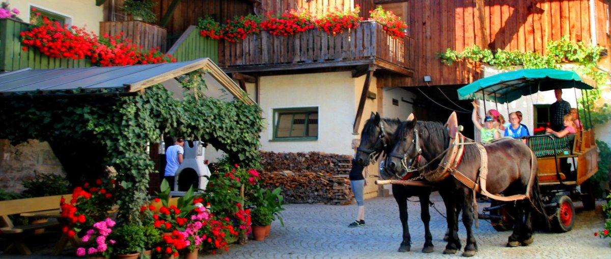 brechenmacherhof-niederbayern-bauernhof-rinchnach-spielscheune-kutschfahrt