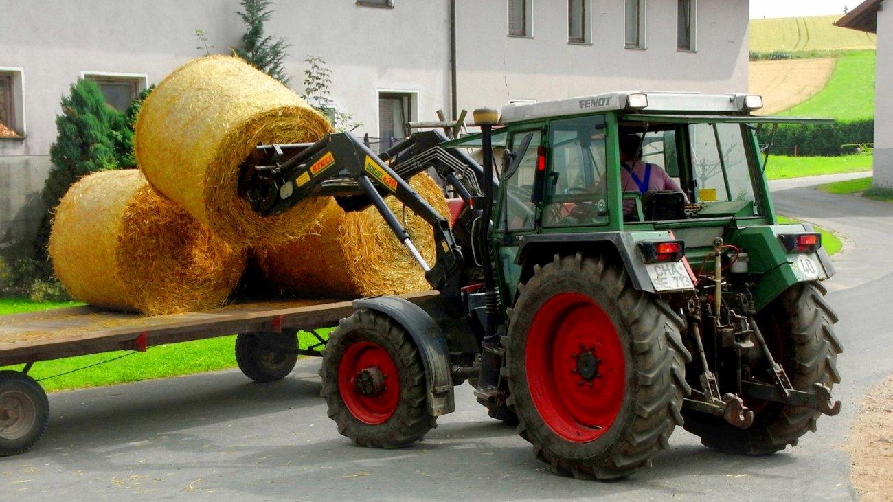 piendl-bauernhof-bayern-hund-und-kind-traktor-fahren