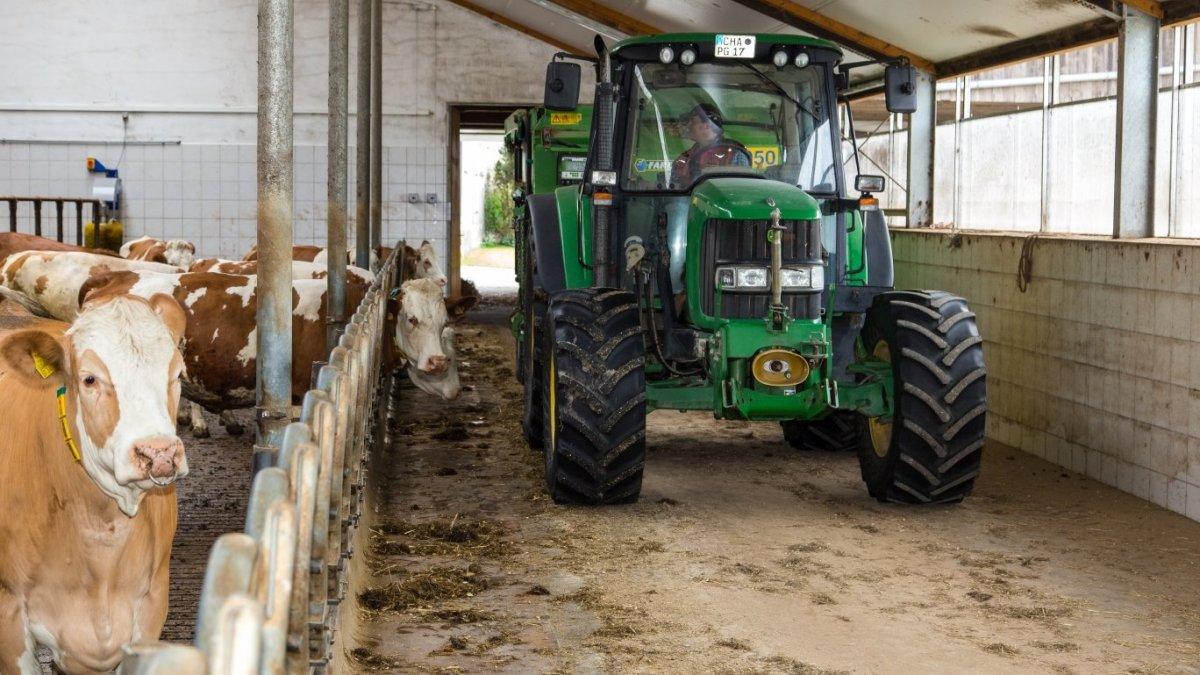 piendl-kinderbauernhof-traktor-fahren-kuhstall-tiere