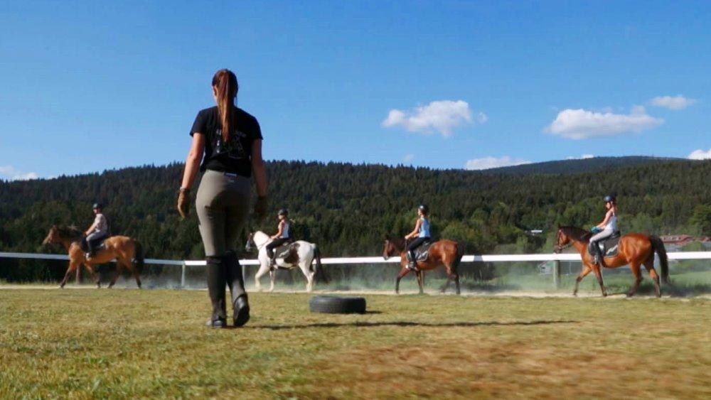 schanzer-reiterhof-bayerischer-wald-reiturlaub-pferde