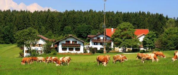 Familien mit Kinder, Wellness und Biobauernhof in Bayern